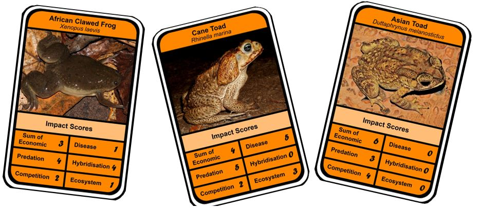 How well do alien amphibian assessments match?